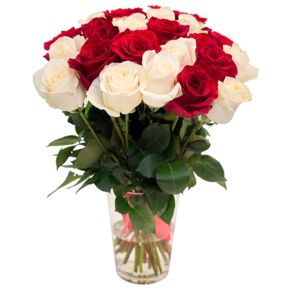 Красные розы и белые розы фото